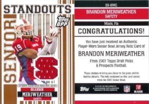 Brandon Meriweather
