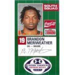 Brandon Meriweather